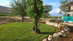 מדשאה בגינת בית פרטי מעוצבת