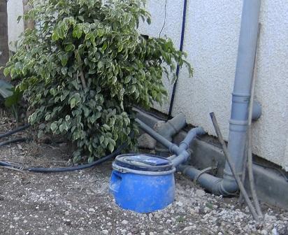 חסכון במים בגינה