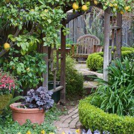 עיצוב פינות חמד בגן